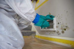 Mold removal and mold remediation professional from ServiceMaster inspecting a wall vent.