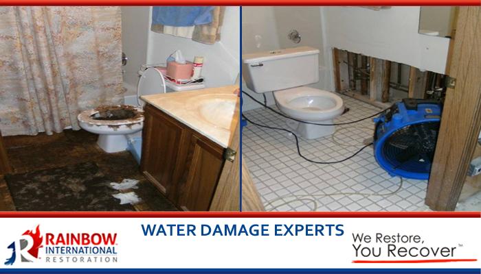 Water Damage Restoration in Oak Lawn, IL