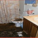 Sewage-Cleanup-Services-in-Downers-Groove-IL