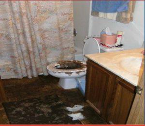 Sewage-Cleanup-Services-in-Oak-Lawn-IL